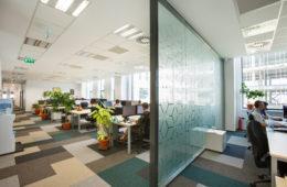 Birou firma iQuest-Brasov- Foto- Ionut Dinca