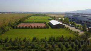 Campo verde vazut de sus (1)