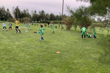 campo verde 11